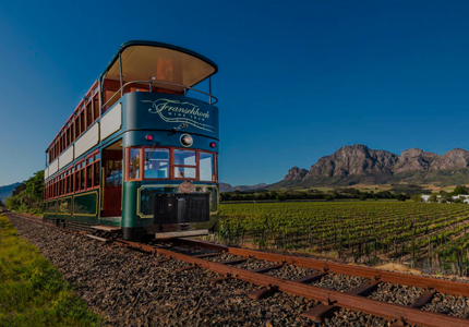 Teraco Wine Tram Tour