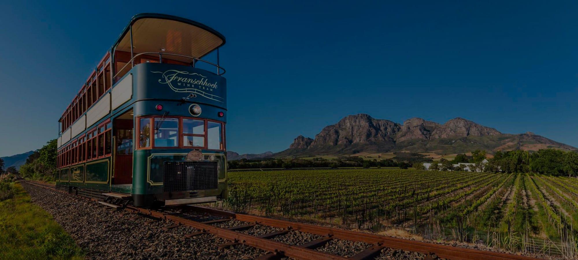 Wine Tour, Franschhoek Western Cape